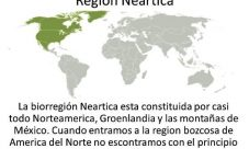 ¿En que bioregión se encuentra Groenlandia?
